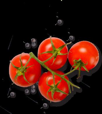 paradajz i biber