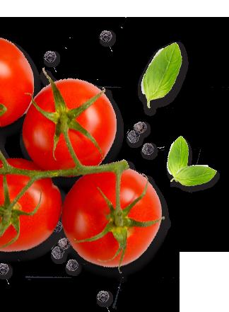 paradajz i listovi1